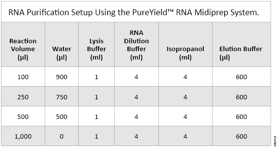 RNA Purification Setup using the PureYield™ RNA Midiprep System.